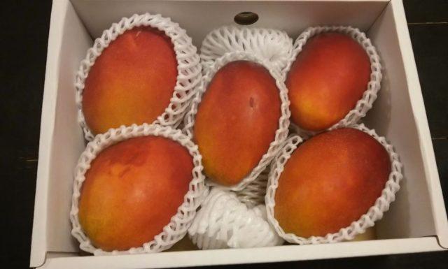 マンゴー頂きました。